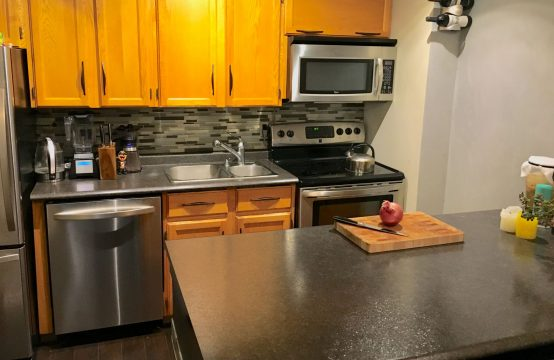1 bedroom, Downtown, In-suite Laundry, Parking Stall