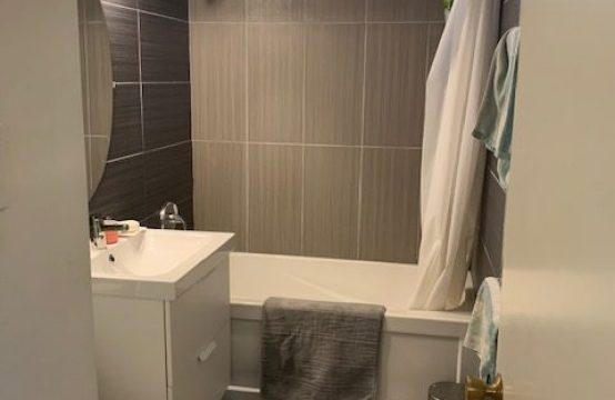 Buena Vista – Bright 2 Bedroom Basement Suite with Private Yard