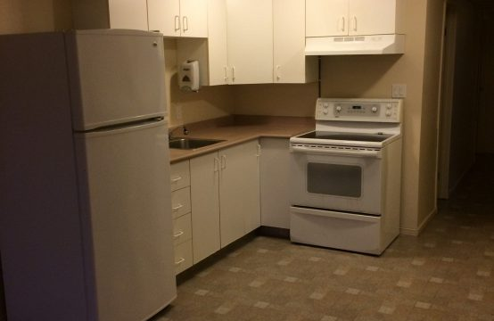 Bright and spacious 2 bedroom basement suite-Wildwood Location